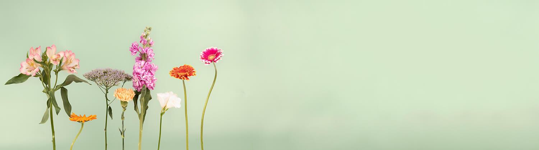 Bouquets frais et arrangements floraux  pour livraison en France
