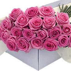 Ces brassées de merveilleuses roses roses, avec des très généreux boutons, ont une longueur de 50 cm minimum. Vous pouvez utiliser ces bottes pour décorer votre maison, votre réception ou salle de fête. Ou simplement comme cadeau, à offrir à des amateurs de décoration florale. Les fleurs sont sélectionnées avec la plus grande rigueur et dans un parfait état de fraîcheur pour que les boutons souvrent lentement chez vous.