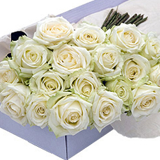 Ces brassées de merveilleuses roses blanches, avec des très généreux boutons, ont une longueur de 50 cm minimum. Vous pouvez utiliser ces fleurs pour décorer votre maison, votre réception ou salle de fête. Ou simplement comme cadeau, à offrir à des amateurs de décoration florale. Les fleurs sont sélectionnées avec la plus grande rigueur et dans un parfait état de fraîcheur pour que les boutons souvrent lentement chez vous.