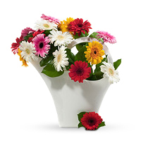 Fresh flowers delivered in Europe, designed for the European market.
