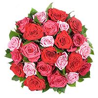 Un bouquet de roses chaleureux, avec 24 roses. Livraison à domicile de roses.