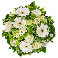 La beauté unique d'une fleur blanche réside dans sa simplicité. Souvent les fleurs blanches servent à faire preuve de respect à une proche. Chaque destinataire saura apprécier ce bouquet classique. (bouqet présenté: diamètre 30 cm)