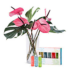 Our tropical bouquet is a chic gift for friends, family, or colleagues for any occasion.