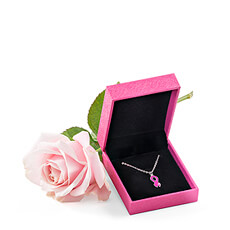 This beautiful necklace and pink rose gift is a lovely gift for any woman touched by breast cancer. When you send this special gift, you are supporting Think-Pink, the National Breast Cancer Campaign in Belgium.
