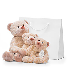 This family of soft, cuddly teddy bears are lovable friends for small children.