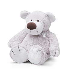 Baggio the Bear is a soft, cuddly teddy bear who's a big friend to small children.