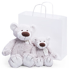 This duo of soft, cuddly bears will delight children of all ages.