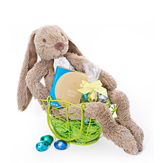 Make it a very happy Easter with this delightful & fun gift basket with a plush Easter bunny and Belgian chocolates.