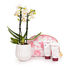 Do you know a woman who could use a little time to relax and rejuvenate? This Cinq Mondes luxury skincare gift with a mini orchid beckons her to enjoy a little spa day right in her own home.