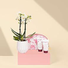 Connaissez-vous une femme qui aurait besoin d'un peu de temps pour se détendre et se ressourcer ? Ce cadeau de soins de luxe Cinq Mondes avec une mini orchidée l'invite à profiter d'une petite journée de spa dans sa propre maison.