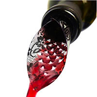 A must-have wine accessory that improves the wine's taste and ensures no spills.