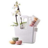 Chose a gift that has it all, flowers, gourmet macarons, and a stylish container. Unique gifts for Europe.