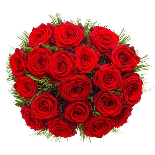 12 Roses Rouges Premium