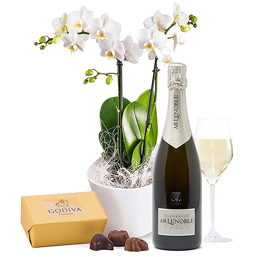 Orchids, Champagne & Chocolates