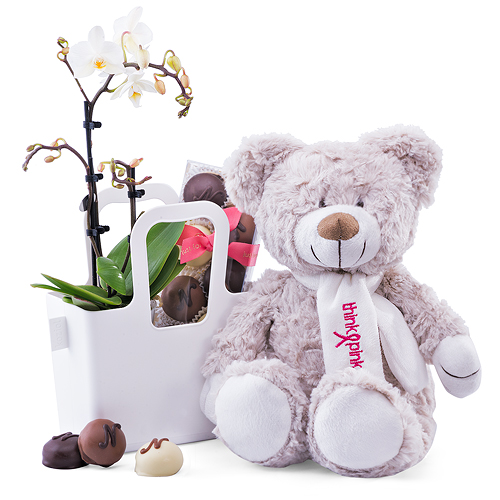 Think Pink Teddy Bear & Orchid in Tachelini