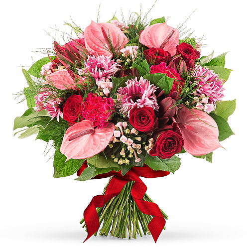 Pink Sweetheart - Medium (30 cm)