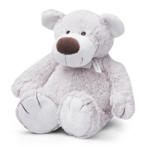 Teddybear Baggio