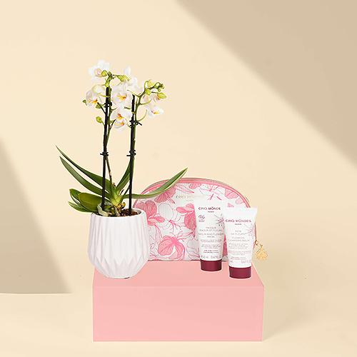 Gift 2021 : Cinq Mondes Straling uit Bali & Mini Orchidee