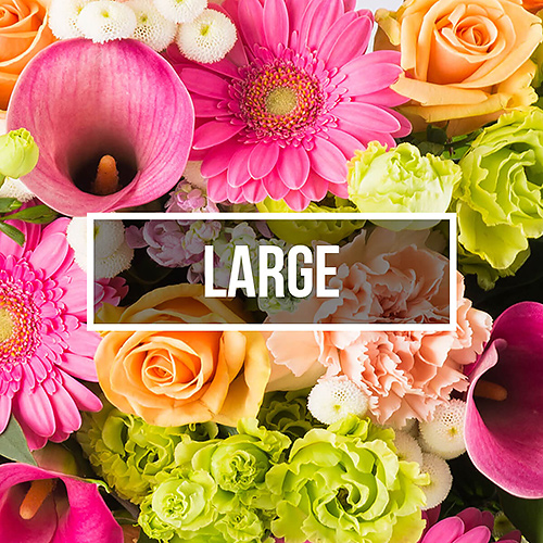 Flowers biweekly delivery large