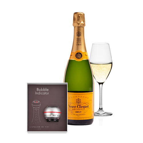 Champagne and Accessories Gift Set