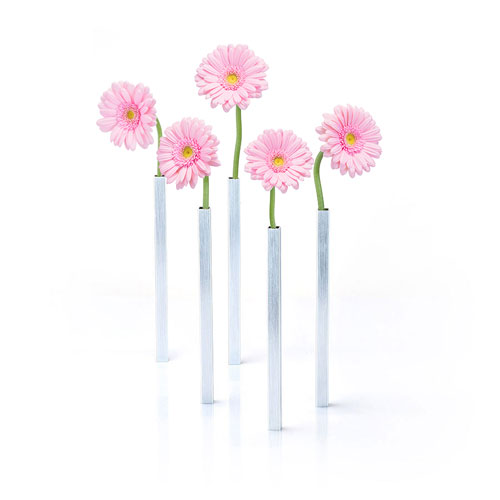 Magnetic Vases and Pink Germini