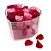 Coeur de Roses [01]