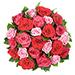 Rose Elégance [01]