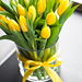 Yellow Tulips [02]