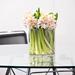 Hyacinths in Vase [02]