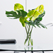 Tropical Green Bouquet in Plexi Vase [02]