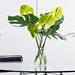 Vase Verte Brise Tropicale [02]