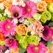 Flowers 2018 : Mixed Summer Bouquet - Luxe (40 cm) [02]