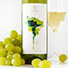 Oxfam Lautaro White & Red Wine Duo [02]
